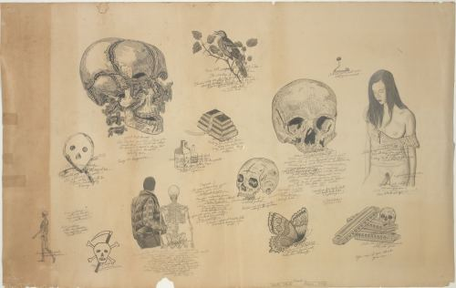 Wes Lang, Skulls and Shit, 2006. Pencil on paper, 24 x 38 in, 61 x 96 cm